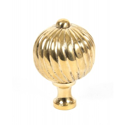 Polished Brass Spiral Cabinet Knob - Large